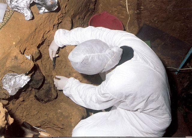 "An article published in the journal ""Science"" describes a new method to collect DNA from sediments in archaeological sites, even when there are no bone remains. A team of researchers from the Max Planck Institute for Evolutionary Anthropology in Leipzig, Germany, successfully experimented with this method in sites of various nations, recovering DNA from various mammals including hominids, specifically Neanderthals and the mysterious Denisovans. Read the details in the article!"