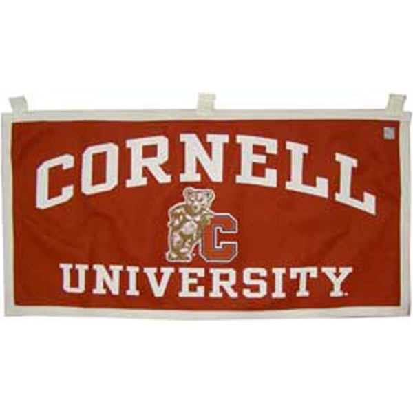 cornell university bear wwwimgkidcom the image kid