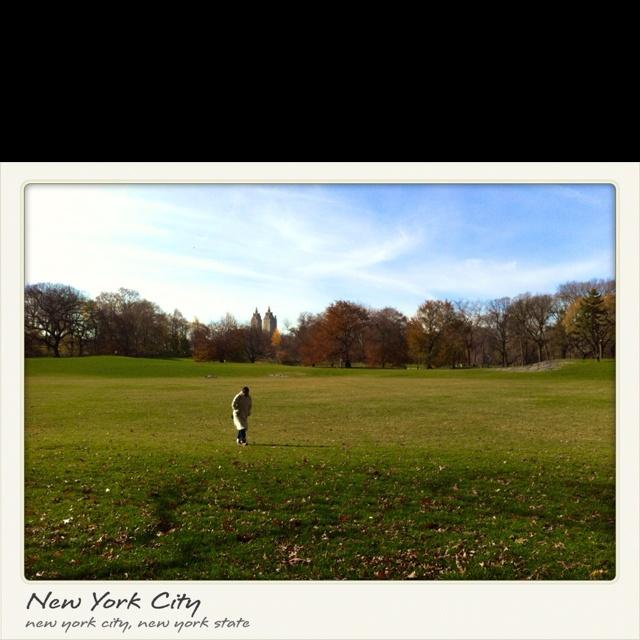 Parks in NY..
