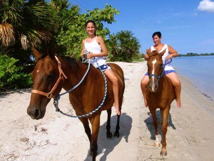 Horseback riding on the beach Sarasota, Siesta Keys