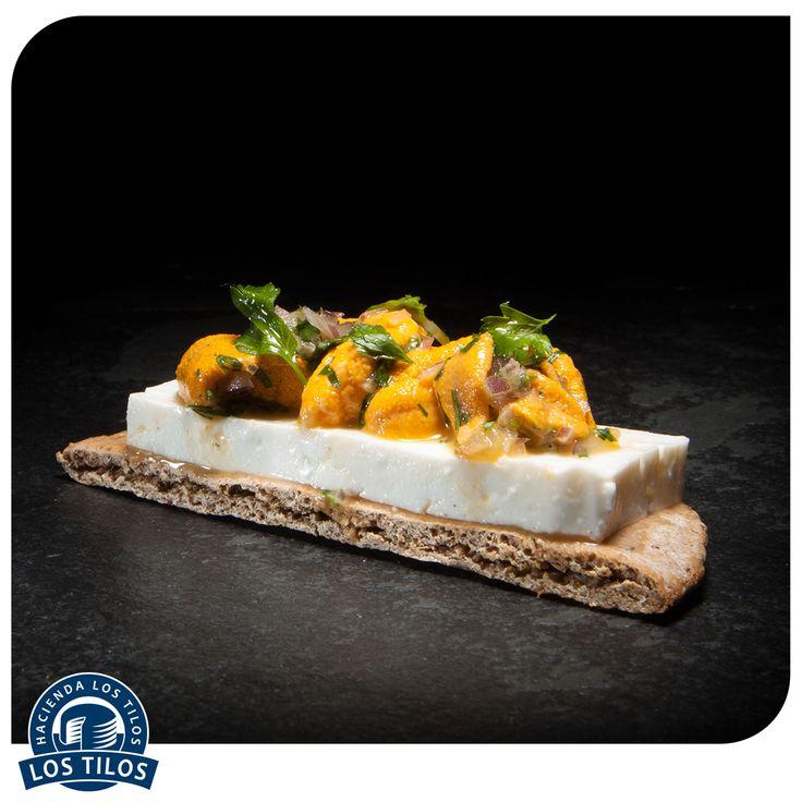 Tartines de queso fresco y erizos al matico. #Recetas #Gourmet http://www.lostilos.cl/recipes/tartines-de-queso-fresco-y-erizos-al-matico/