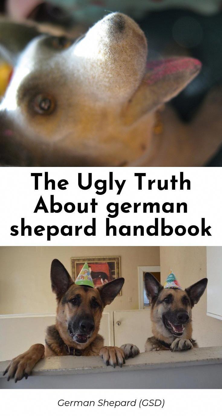 Wanting A German Shepherd Adoption German Shepherd Protection