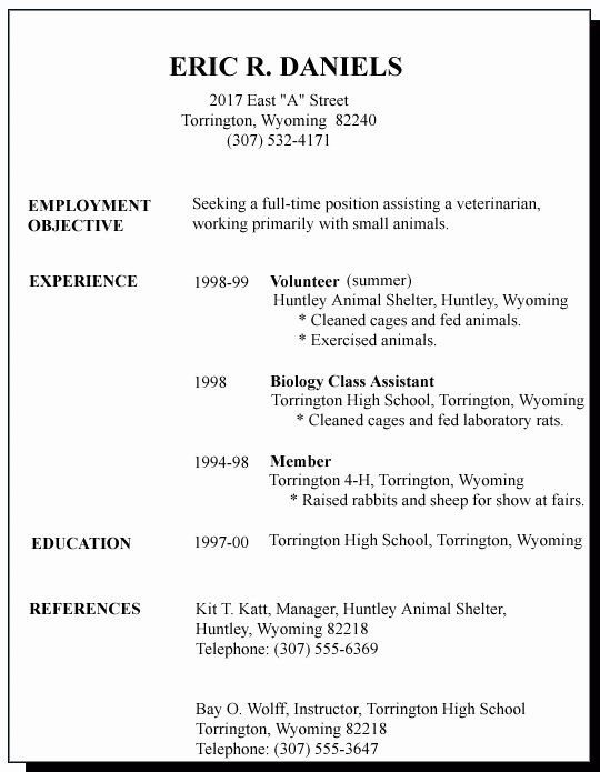 First Job Resume Template Best Of 12 13 Resume Sample For First Time Job Seeker In 2020 Job Resume Samples Job Resume Template Job Resume Examples