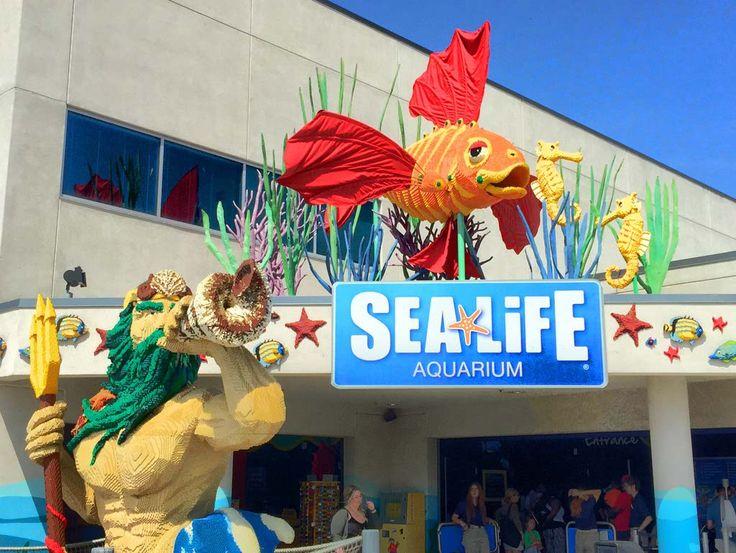 Sealife Aquarium at Legoland, Carlsbad