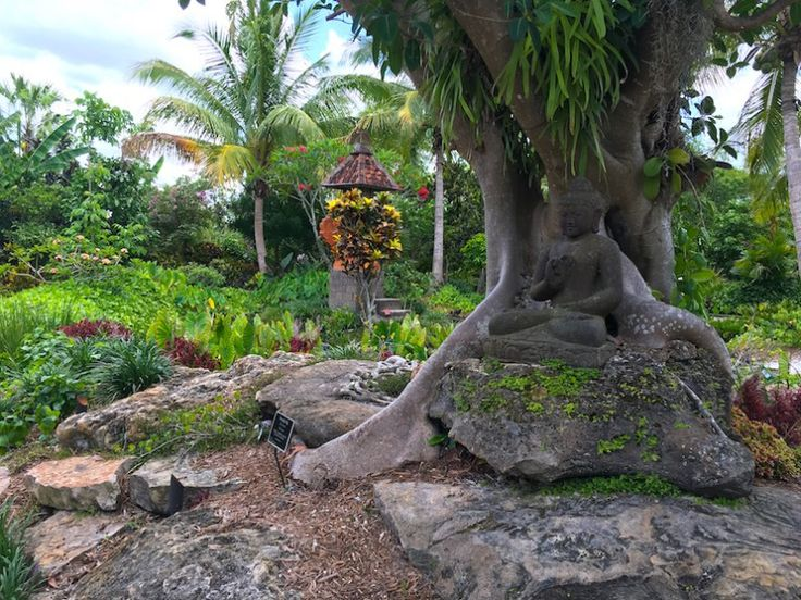 124 best images about naples florida attractions on - Botanical gardens naples florida ...