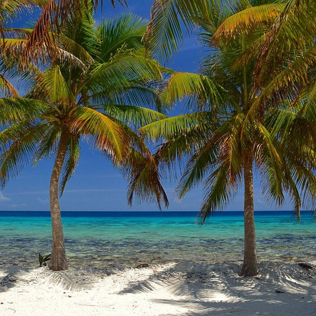 10 Reasons Why You Should Quit Your Job and Move to Belize | Belize Tourism & Travel Guide