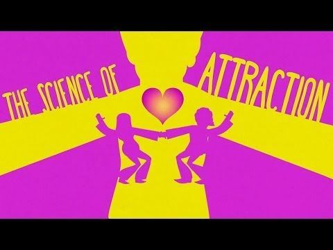 What makes you attracted to someone? The science behind sexual chemistry:
