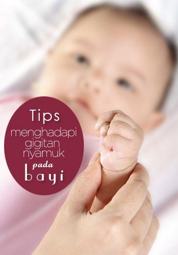 Tips menghadapi gigitan nyamuk pada bayi :: How to heal mosquito bites on babies