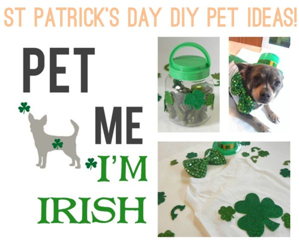 St Patrick's Day DIY Pet Ideas via IrresistiblePets.net