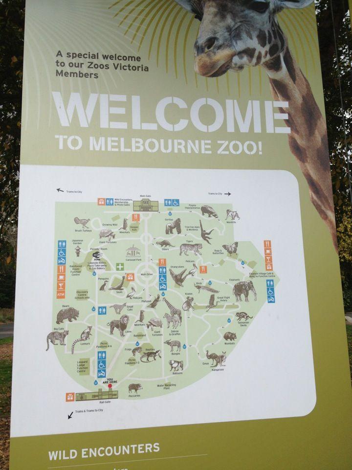 Melbourne Zoo itt: Parkville, VIC