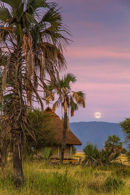 Setting moon in Lake Manyara National Park, Tanzania (by Linc060).