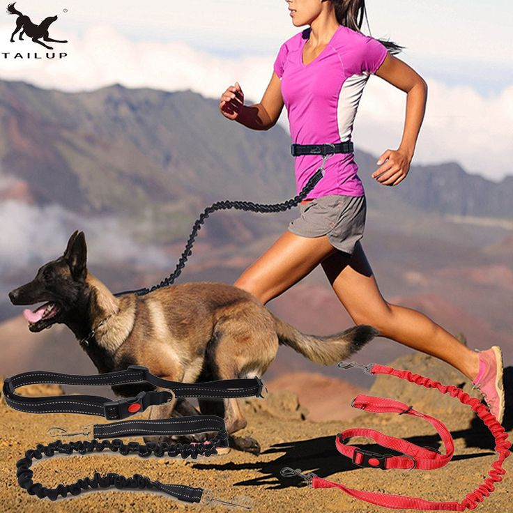 Find More Leashes Information about [TAILUP] Pet Dog Running Leashes Hands Freely Great for Walking ,dog leash Rope with reflective Jogging dog collars leash CL109,High Quality dog running,China running leash Suppliers, Cheap dog running leash from Tongmao Pets Store on Aliexpress.com