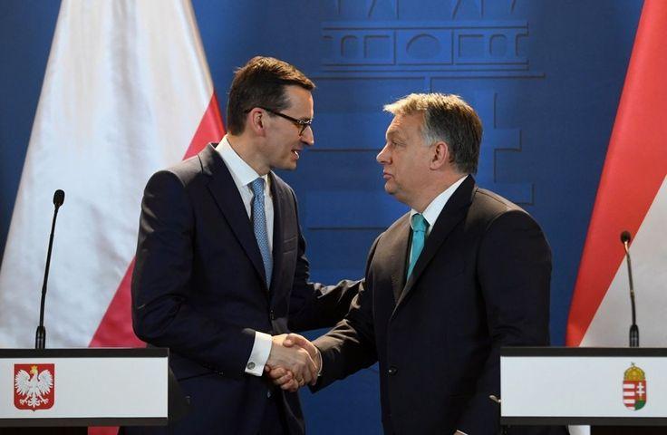 НОВЫЕ ПРАВЫЕ 2033: Польша & Венгрия: двойной удар по миграционной пол...