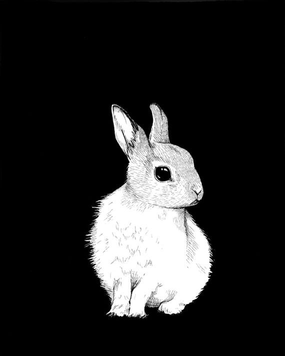 Bunny Print by kpolly on Etsy, $12.00 The linework... <3: