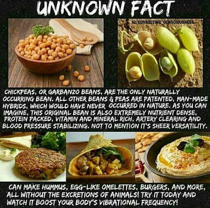 dr sebi diet recipes