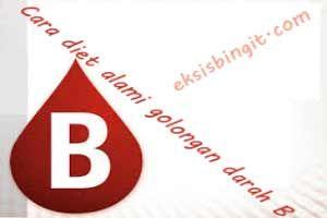 Anda salah satu orang yang memiliki golongan darah B?  Bagi Anda yang bergolongan darah B, kini ada cara diet golongan darah B yang alami dan tidak menyiksa kesehatan tubuh. Golongan darah B adalah golongan darah yang universal, karena hamper tidak memiliki masalah dengan konsumsi makanan. Meskipun begitu tetap ada jenis makanan yang dianjurkan untuk dikonsumsi maupun dihindari