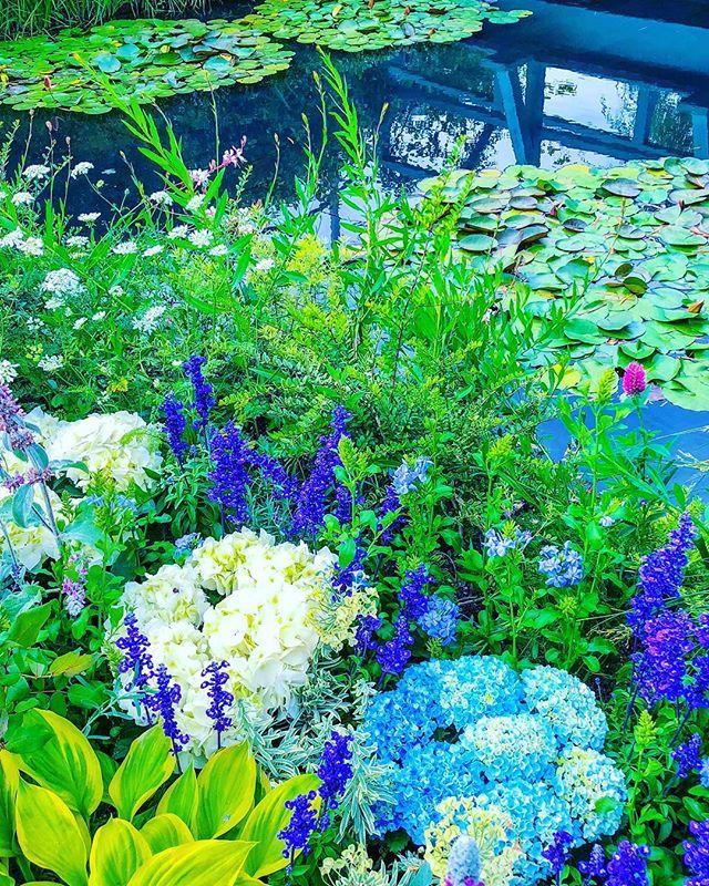 2504 Best Garden Wonderland Images On Pinterest