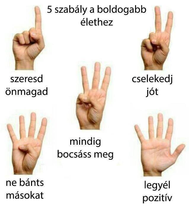 5 szabály