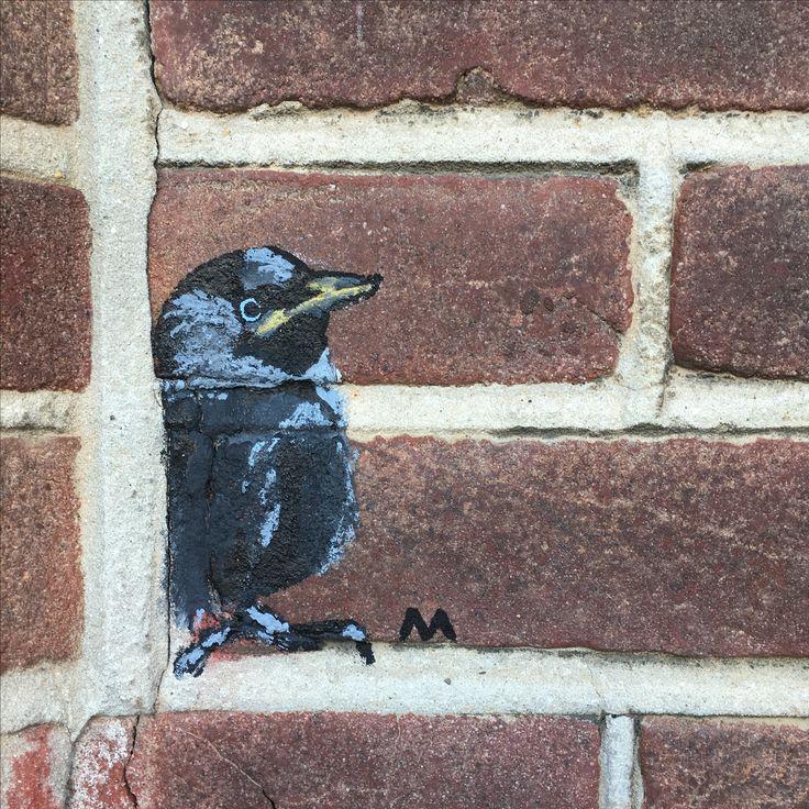 Mini-muurschildering. Zomaar. Omdat ik kauwtjes zo leuk vind  #MAAK97 #streetart #atelier #Maastricht #Heggenstraat5  #muurschildering #lifeisart #lifestyle #dieren #interieurontwerp #envéélmeer