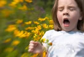 Ways to eliminate and get rid of allergies