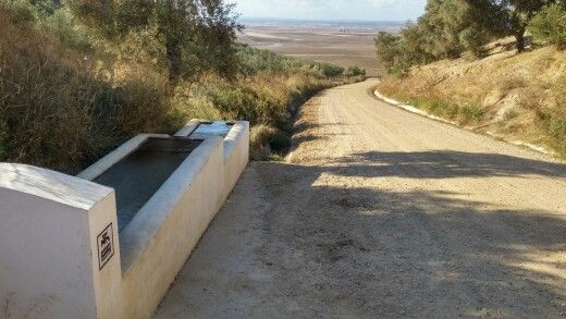 Poza del Moro, Valencina