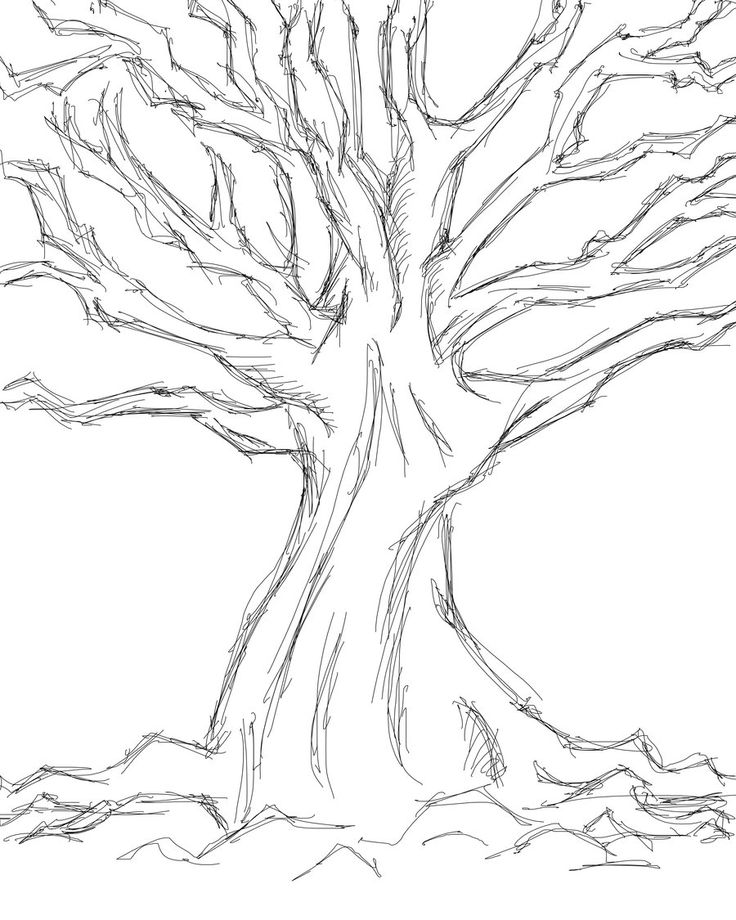 Images For > Simple Tree Sketches Images | Wedding Tree ...