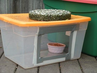 The Very Best Cats: Feeding Outdoor Cats in the Winter - Food Stations...