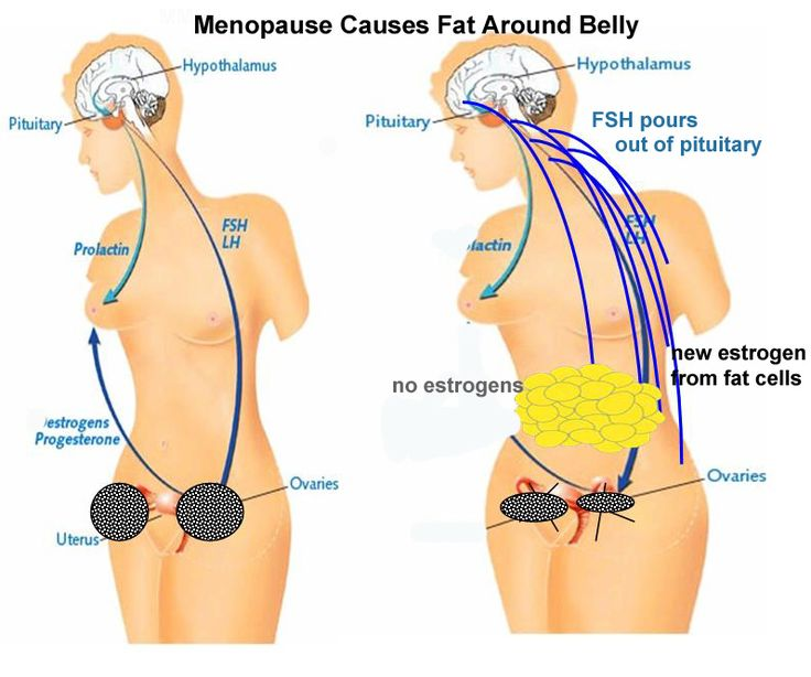 menopausal hormone therapy and weight loss