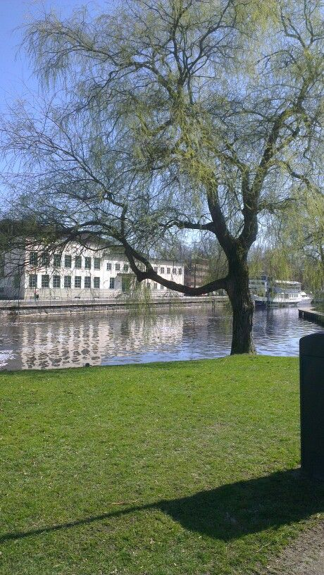 Uppsala park