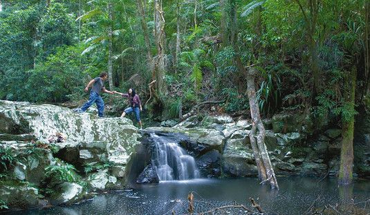 Page image for the channon, protesters falls, nimbin & mt nardi
