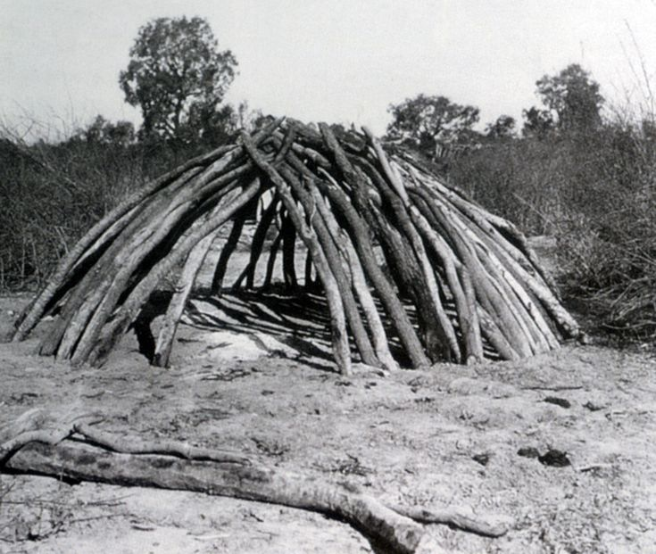 17 best images about aboriginal studies on pinterest 1890 home architecture