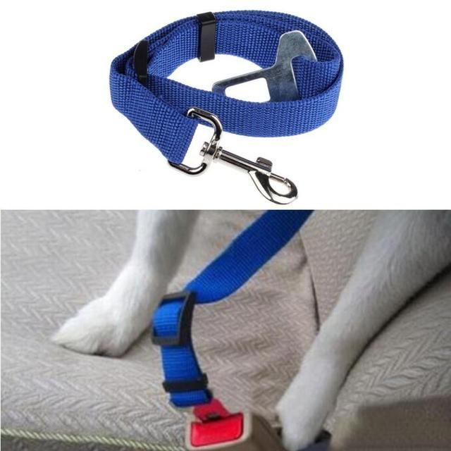 Shop Now: Pet Car Seat Belt is available in my store ✨ http://www.gear-fanatic.com/products/pet-car-seat-belt?utm_campaign=crowdfire&utm_content=crowdfire&utm_medium=social&utm_source=pinterest