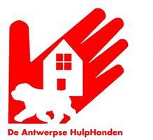 Antwerpse hulphonden: verzorgen en uitlaten van honden