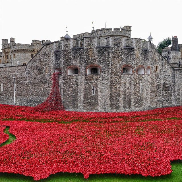 If you want to catch the end of The Tower of London's Poppies exhibit (it ends November 11), you'll want to know where to stay. Photo courtesy of somekindofwanderlust on Instagram.