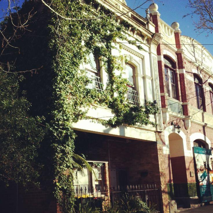 Creeper plant on house - Flemington, Victoria