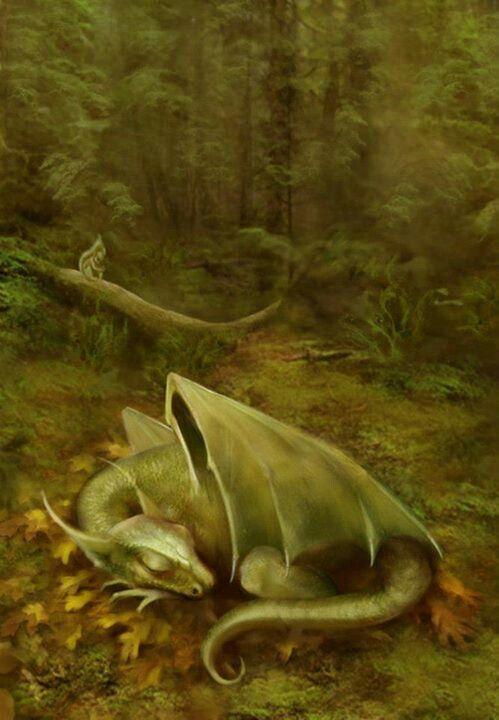 Baby dragon sleeping on forest floor