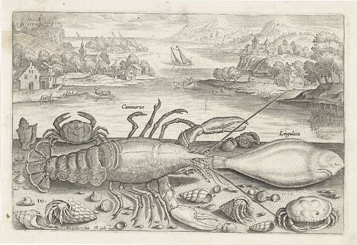 Een vis en enkele schaaldieren op het strand, Adriaen Collaert, 1627 - 1636