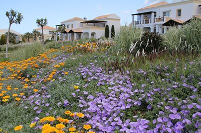 Neptune Hotels - Resort  Landscape Design: Greenways - Karolos Chanikian www.greenwayshellas.gr