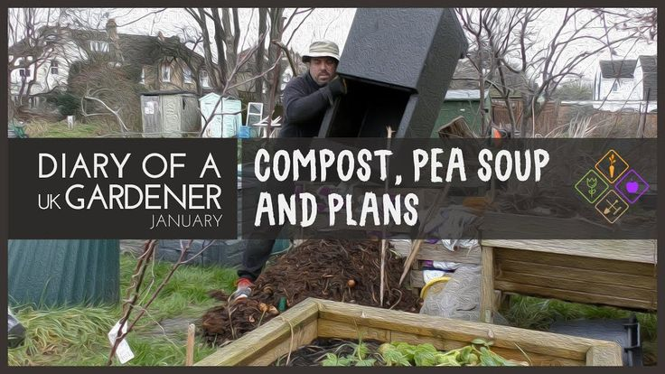 January: Compost, Pea Soup and Plans #6