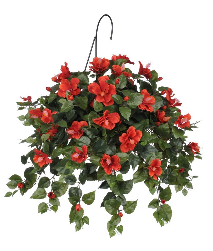 artificial hibiscus hanging plant in basket baskets plants and hanging plants. Black Bedroom Furniture Sets. Home Design Ideas