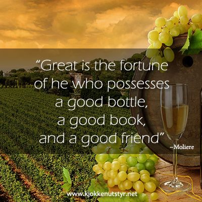 Wine Quote - Great is the fortune of he who possesses a good bottle, a good book, and a good friend.