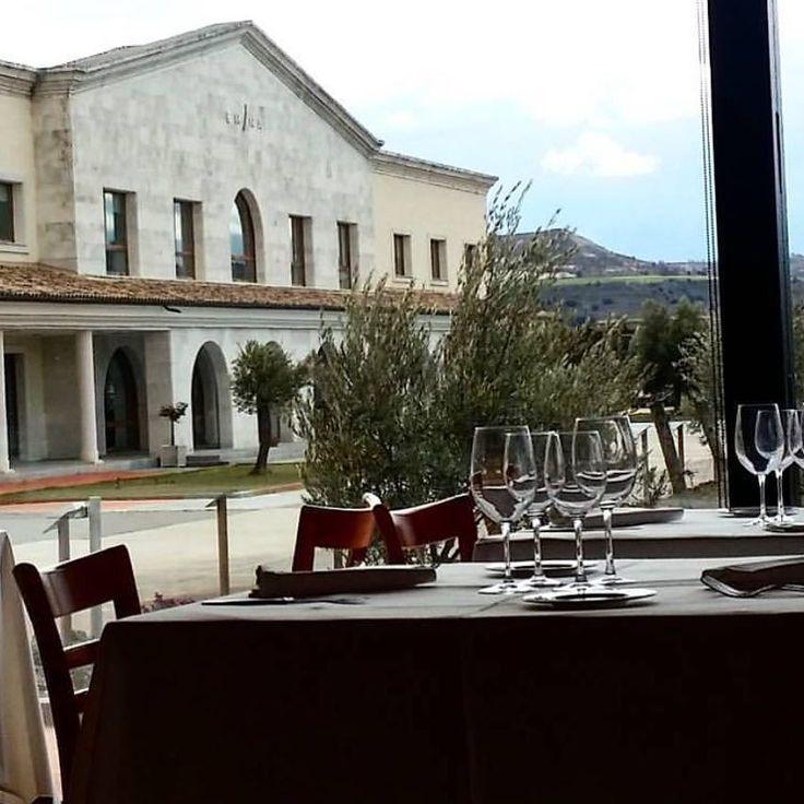 Te apuntas a venir a nuestro #restaurante La Espadaña de San Bernardo y comer rodeado de viñedos y grandes #vinos. Estamos en #ValbuenadeDuero  We  #wine #vino #matarromera #redwine #winelover #winetime #vine #wineoclock #instawine #drinkup  #instavine #bottle #vinho #wijn #winecountry #igersspain #winesfromspain #ワイン #instagood #photooftheday #viñedo  #vin #vineyard #winery #bodega  @winesfromspain @igersspain @rutasvinoespana @turismosptv  @tierradesabor @cylesvida @destinocyl…
