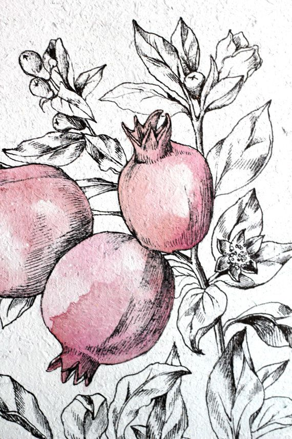 Original Drawing. Botanical Art. Original by AugustArtStudio