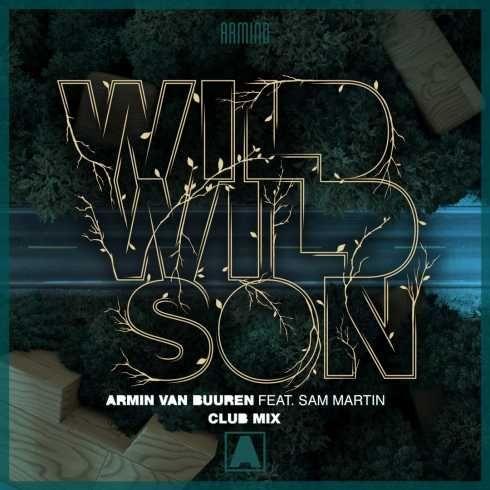 Armin van Buuren feat  Sam Martin – Wild Wild Son (CDQ