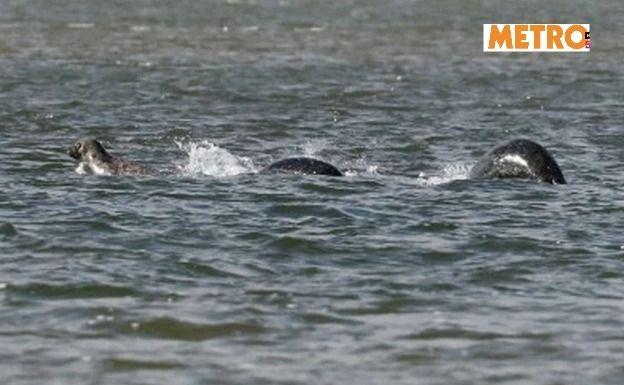 La foto originale scattata al mostro di Loch Ness
