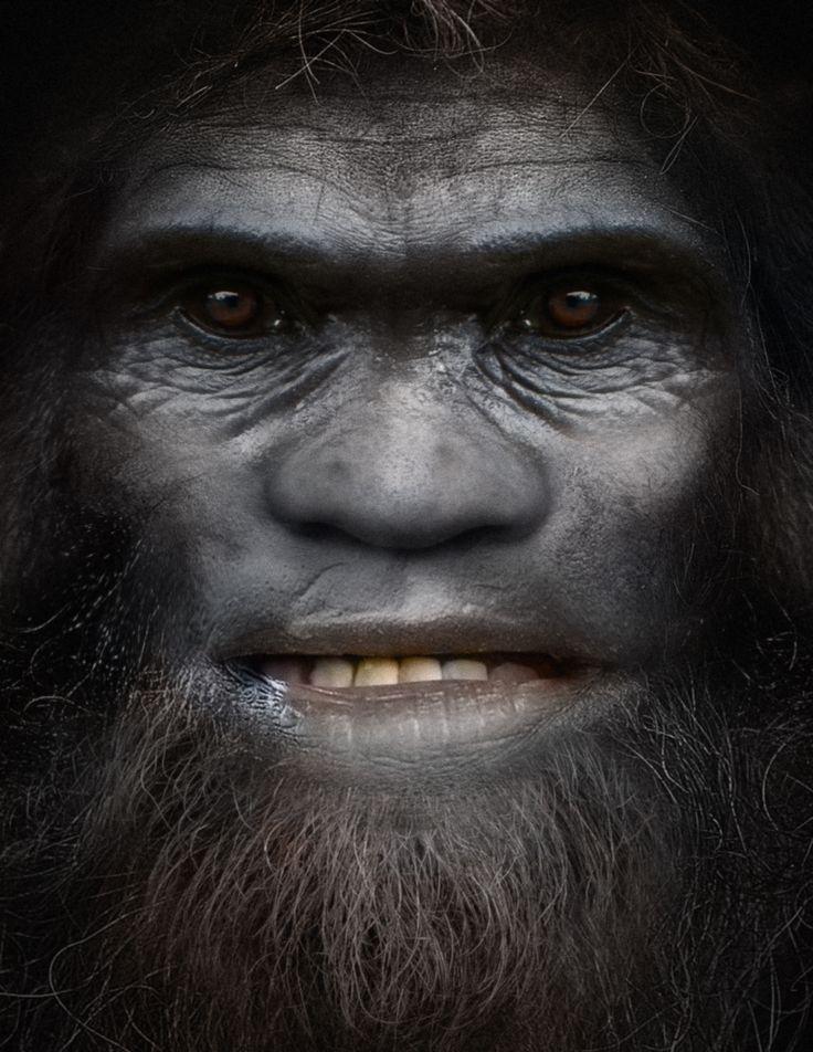 501 best images about Bigfoot on Pinterest | Legends ... The Legend Is True Boggy Creek