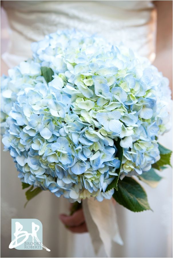 Graceful Wedding Bouquet Inspiration: Blue Hydrangea Flower https://bridalore.com/2017/11/15/wedding-bouquet-inspiration-blue-hydrangea-flower/