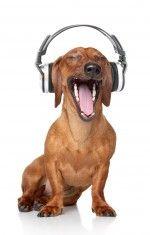 listen to music 1