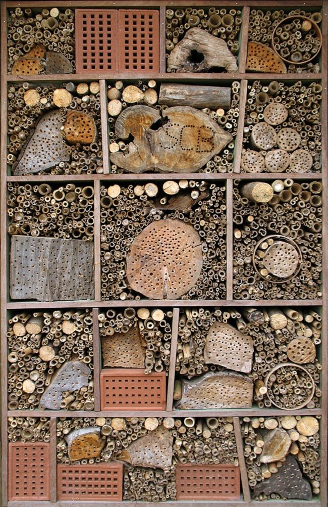 lots of insect hotels