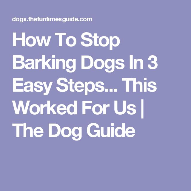 to stop barking dogs in 3 easy steps this worked for us the dog